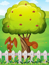 A rabbit and a squirrel playing under the cherry tree illustration of Royalty Free Stock Photography