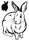Rabbit vector Royalty Free Stock Images