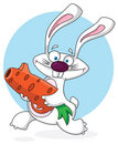 Rabbit white with carrot gun Royalty Free Stock Images