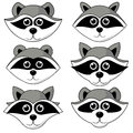 Raccoon gargle, head, facial expression and emotion illustration on white background in vector set Royalty Free Stock Photo