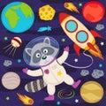 Raccoon in space