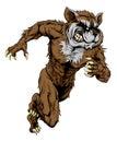 Raccoon Sports Mascot Running
