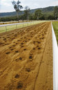 Race track with horse's footprint Royalty Free Stock Image