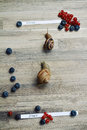 Race of two snails on wooden background with start and finish line. Royalty Free Stock Photo