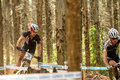 Racing through the trees pietermaritzburg south africa april james reid trek during of round uci mtb world cup held at cascades on Royalty Free Stock Photography