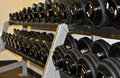 Rack of Free Weight Dumbbells Royalty Free Stock Photography