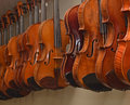 Rack of hanging violins 1 Royalty Free Stock Photo