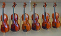 Rack of hanging violins 4 Royalty Free Stock Photo
