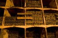Rack of old vine Royalty Free Stock Photo
