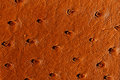 Raddle brown leather texture Stock Image