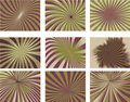 Radial Sunbeam Striped Background Collection Stock Photo