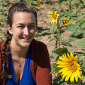Radiating joy in field of sunflowers closeup happy young woman with long braid nest to Stock Images