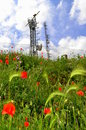 Radio location masts in spring nature beautiful wildflowers on field and at the background Royalty Free Stock Image