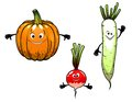 Radish turnip and pumpkin vegetables with smiles in cartoon mascot style for bio food design Stock Photography