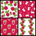 Radish Vegetable Seamless Patterns Set Royalty Free Stock Photo