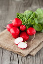 Radish on a wooden table bunch of fresh organic rustic background selective focus Royalty Free Stock Images