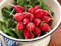 Radishes being prepared Stock Photo