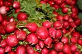 Radishes for sale in an outdoor market Royalty Free Stock Image