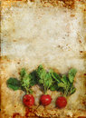 Radishes on Stained grunge background Royalty Free Stock Photos