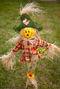 Rag doll close up of a grass bakground Royalty Free Stock Image