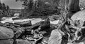 Ragged falls algonquin park ontario canada a black and white view of in part of the oxtongue riverway Stock Photography