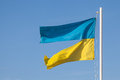 Ragged ukrainian flag divided ukraine concept Stock Images