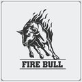 Raging bull. Vector emblem, label and badge. Royalty Free Stock Photo