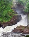 Raging torrent at murchison falls high angle view of the in uganda africa Royalty Free Stock Images