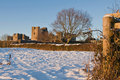 Raglan Castle Royalty Free Stock Photo