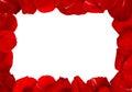 Rahmen von rose petals Stockbild