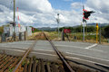 Rail, level crossing. Stock Images