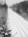 Rail track on a snow b w landscape view of winter scene at prigueax french district Stock Photography