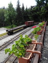 Rail train old rock grass wood day Royalty Free Stock Photos