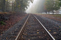 Railroad in the forest at the misty morning autumn filled with brown leaves Royalty Free Stock Photo