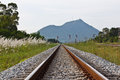 Railroad in thailand transportation and travel Royalty Free Stock Images