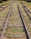 Railroad track an overgrown abandoned Royalty Free Stock Images