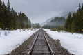 Railroad Track Through a Snowy Forest Royalty Free Stock Photo