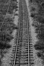 Railroad tracks in b w color Royalty Free Stock Photos