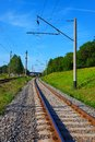 Railroad tracks in summer vertical view of Royalty Free Stock Images