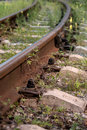 Rails and sleepers of railway track in summer Royalty Free Stock Image