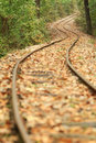 Railway coverd with fallen leaves Royalty Free Stock Photography
