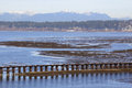 Railway crossing mud flats a track crosses over the in southern british columbia Royalty Free Stock Photos