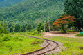Railway track in the north of thailand Stock Image