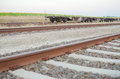 Railway tracks with empty open wagons sidewards in the countryside Stock Photo