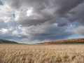 Rain clouds over desert field dark starting to onto a dry grass with a red cliff in the distance in northern arizona Royalty Free Stock Photos