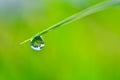 Rain Drop and bokeh Royalty Free Stock Photo