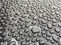 Rain drops on a car roof Royalty Free Stock Photo