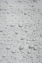 Rain drops on window pane Royalty Free Stock Photo