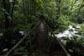 Rain forest stream crossing an old metal bridge a rainforest at la selva biological station in costa rica Stock Photography