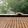 Rain On Nature. Abstract Backg...